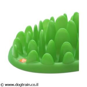 Green- צלחת לאכילה איטית