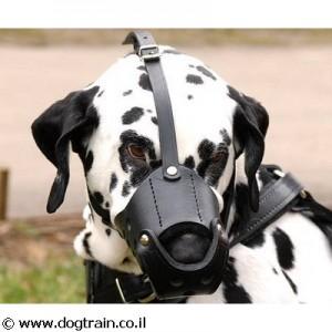 LM-3843- זמם עור קשיח לכלב לכל הגזעים