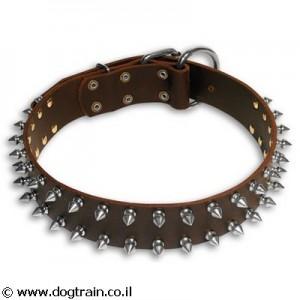 LC-3631 קולר עור משולב שתי שורות ניטים לכלבים בינוניים וגדולים