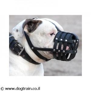 LM-2613- זמם לכלב מעור קל משקל לשימוש יומיומי