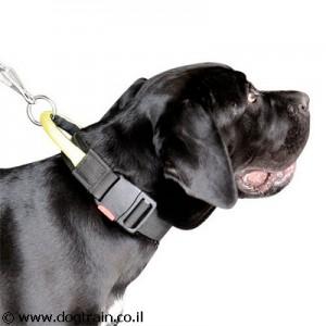 NC-4641 קולר ניילון לכלב עם ידית אחיזה