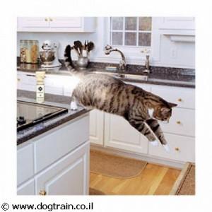 ssscat- בקבוק מילוי לספריי מרחיק חתולים וכלבים