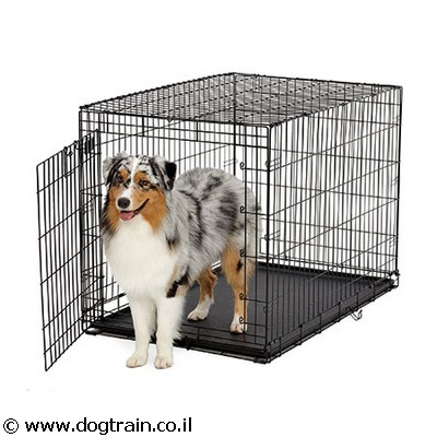 dog training cage border collie 2 doors