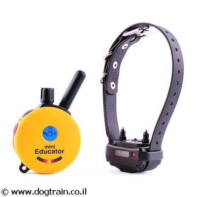 e-collar 1