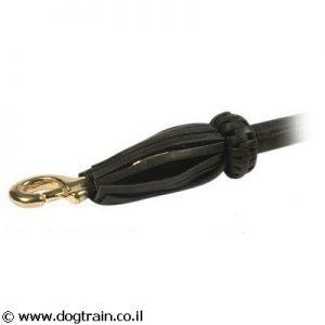 רצועת עור דקורטיבית אופנתית עם קישוט לטיול עם 2 כלבים