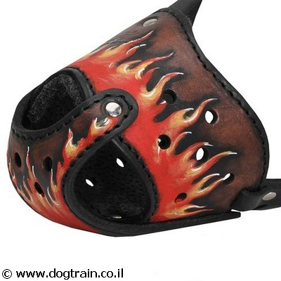best-dog-muzzle-for-daily-use