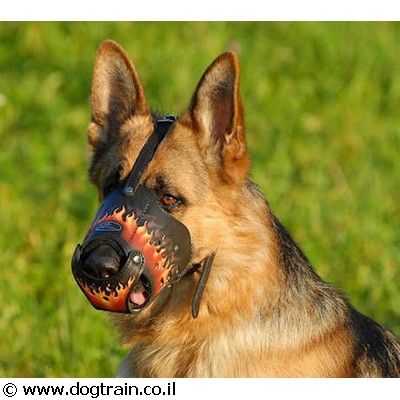 best-dog-muzzle-for-daily-use2
