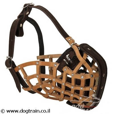 best-dog-training-muzzle