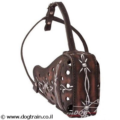 painted-beautiful-leather-dog-muzzle