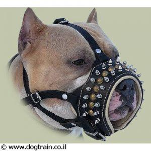 זמם מעוצב לכלב מרופד עור נאפה רך עם ניטים שפיציים מפליז