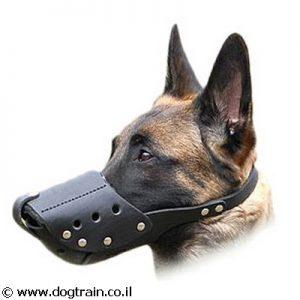 זמם לכלב מעור קל לתפעול לטיולים לגזעי כלבים בינוניים