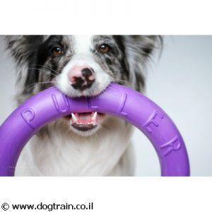 Puller- פולר זוג טבעות למשחק מהנה ולפיתוח כושר הכלב