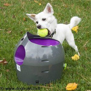 יורה כדורי טניס אוטומטי של PetSafe