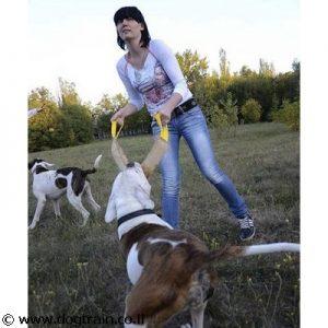 פפירול רחב וארוך עשוי מעור איכותי לכלבים גדולים עם 2 ידיות אחיזה